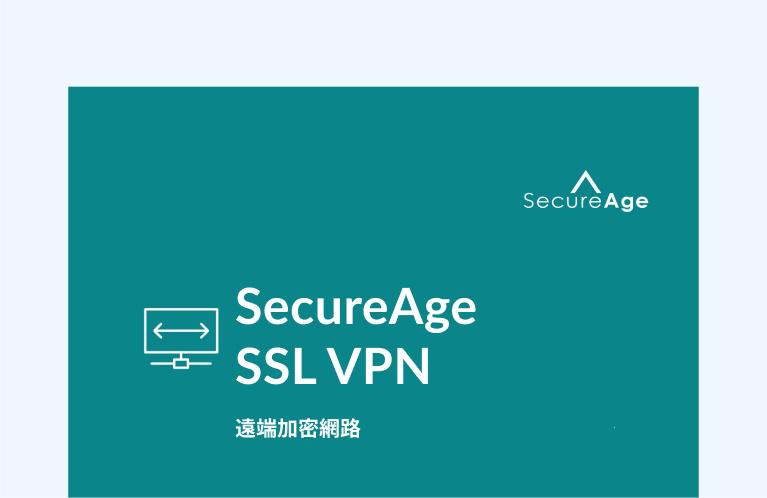 企業 SSL VPN