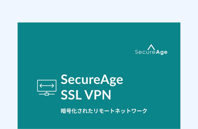 企業用 SSL VPN
