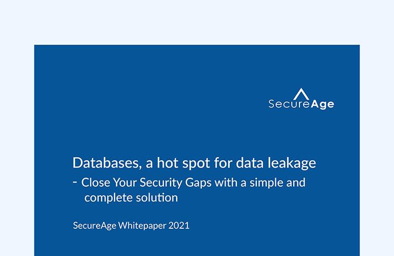 Databases, a hot spot for data leakage